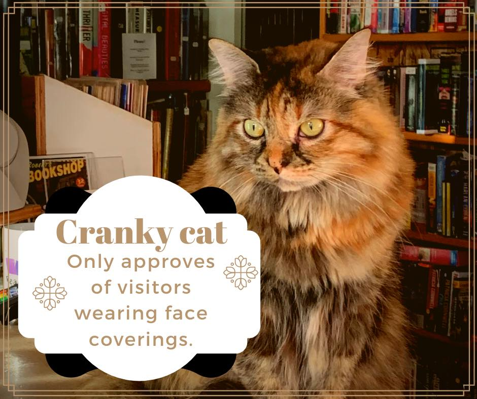 cat with text cranky cat only approves of visitors with face coverings